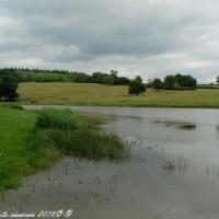 Étang de Oulon - Plan d'eau du village d'Oulon