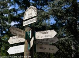 Forêt des Bertranges