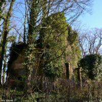 Les ruines de l'ancienne église de Limanton un patrimoine