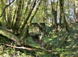 Ponts de la rigole d'Aron Nièvre Passion