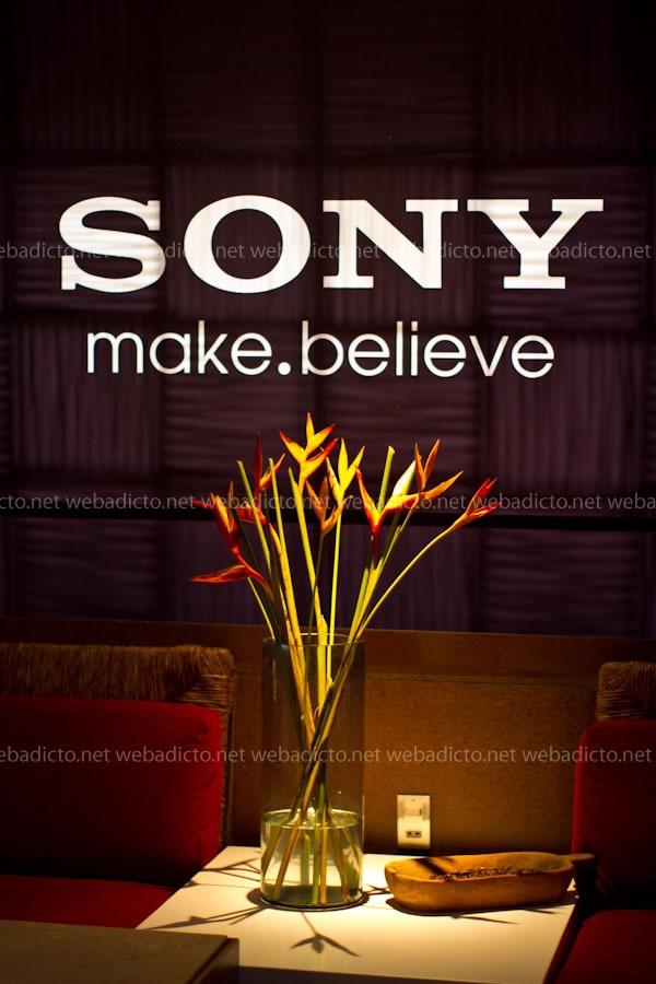 Sony-genezi-audio-hogar-2011-5