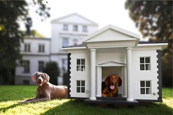 casa-para-perro-con-decoracion-02