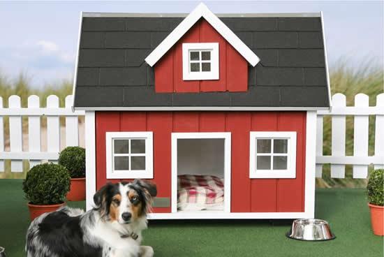 casa-para-perro-con-decoracion-03