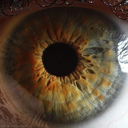 fotos-macro-ojos-suren-manvelyan