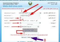 Guide for Dubai Visa Check by passport number entry permit