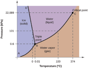 Solved: From The Phase Diagram For Water (figure Below), D