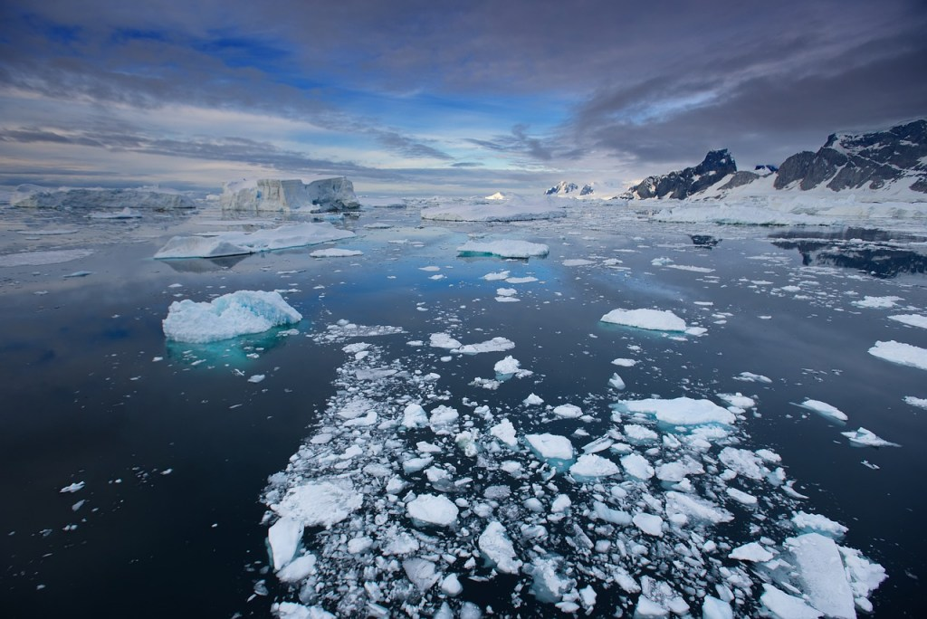 A Tribute to the Antarctic