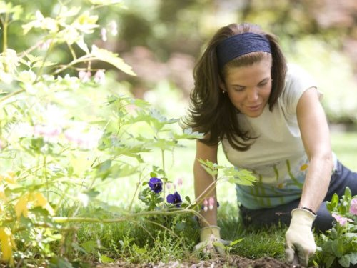 The importance of wearing gardening gloves