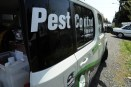 pest control companies come up with specialized plans