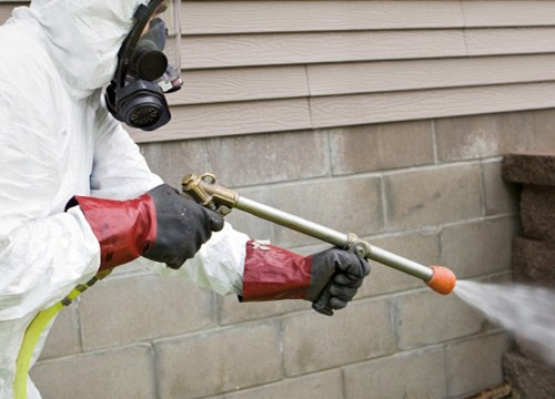 Tips on Eliminating Terminates from Your Home