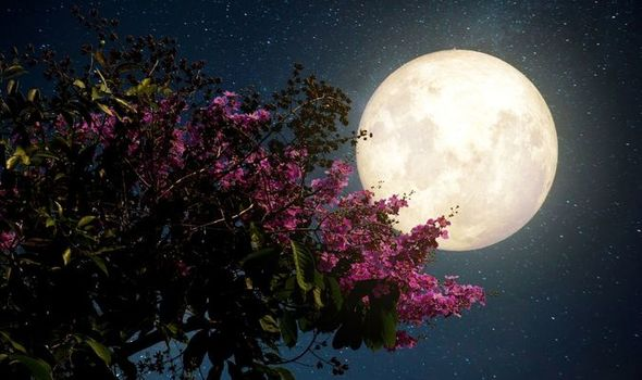 This week's Full Flower Moon will be the last Supermoon of 2020