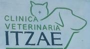 veterinaria-cancun-itzae