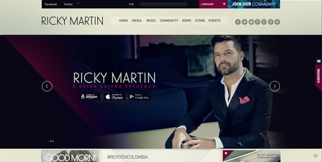Site wordpress - Ricky Martin