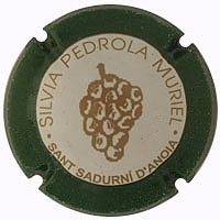 SILVIA PEDROLA MURIEL Viader 4395 X.14732