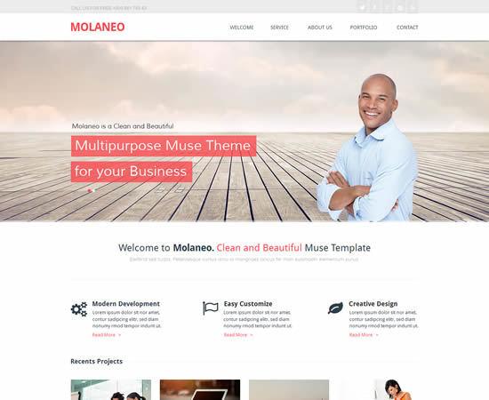 Molaneo