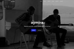 website for musicians