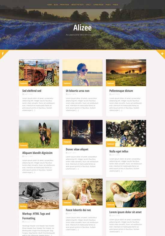 15 temas Bootstrap para WordPress gratis - Webdisenia