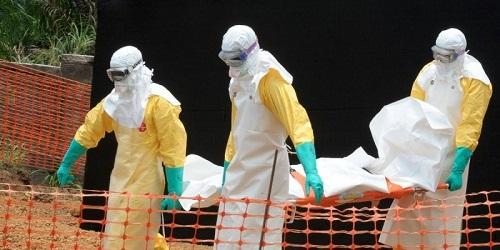 Virus Ebola (photo sud-ouest.fr)