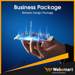Business Website Design Package