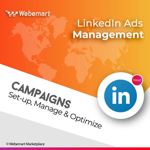 LinkedIn Advertising Management