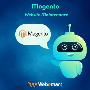 Magento Website Maintenance