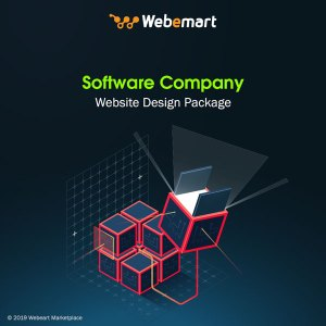Software Company Website Design Package Webemart Marketplace