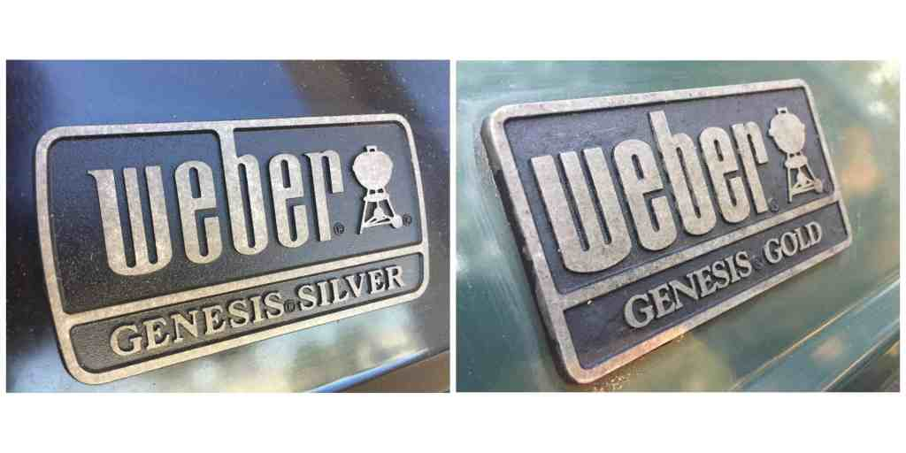 Silver and Gold Badges