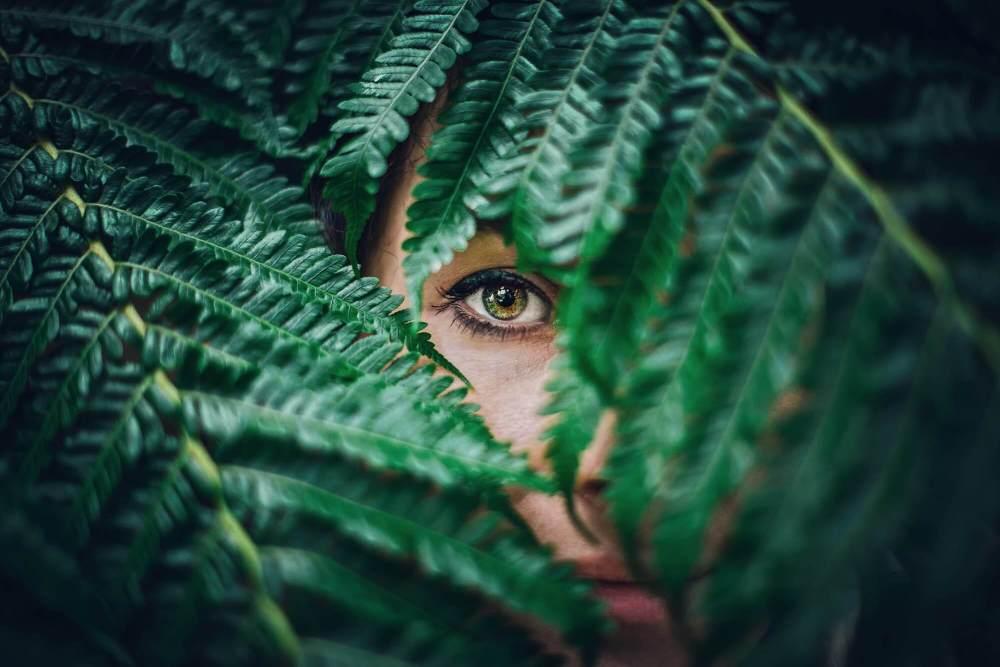 こちらをじっと見る女性の目