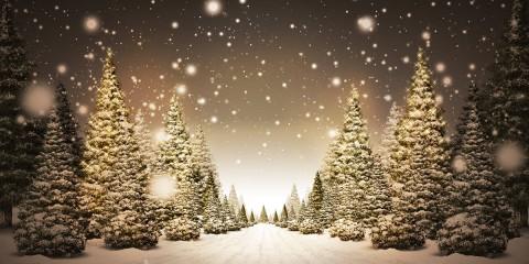 Resultado de imagen de navidad paisaje