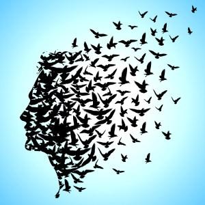 Porque estudiar filosofía nos hace más libres