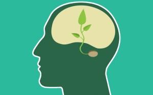 ¿Qué se estudia en psicología?