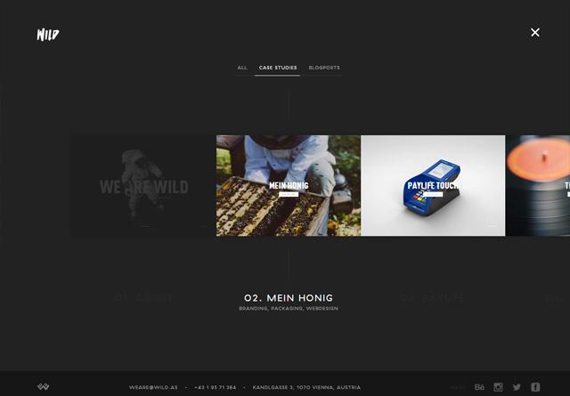 Portfolio website: WILD
