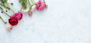 pinkflower-2