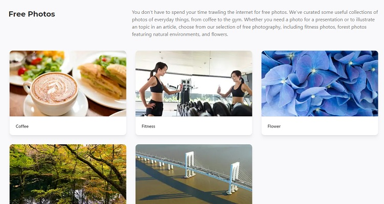 Quality and meaningful images can make an impact on your website conversion.