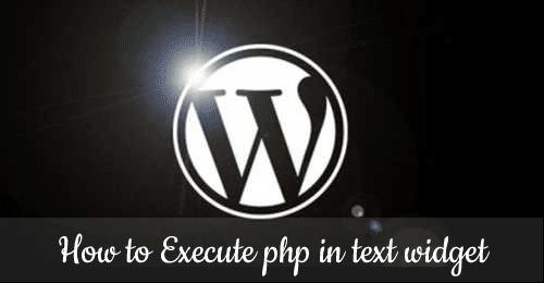 Allow PHP in WordPress default text widget