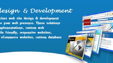 Affordable website designing in Chawri Bazar delhi