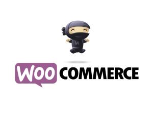 woocommerce web design -weblancexperts informatics