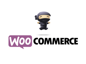 Woo-commerce web design
