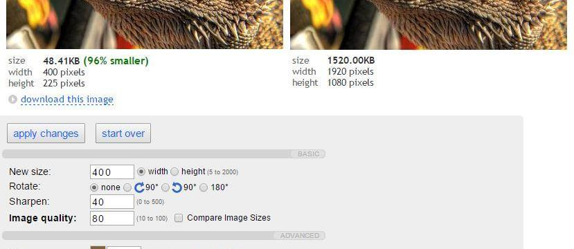 5 Tools to Compress or Resize Images Without Losing Quality