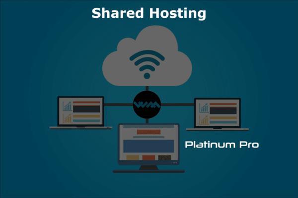 WM Host shared hosting platinum pro