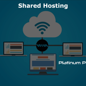 WM Host shared hosting platinum pro