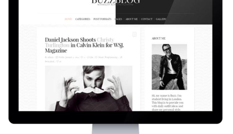 BuzzBlog Clean WordPress Blog Theme