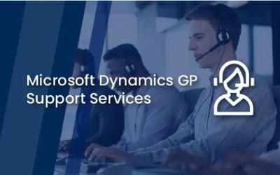 Microsoft Dynamics GP Support Services