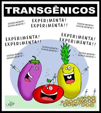 https://i2.wp.com/www.webmujeractual.com/wp-content/uploads/2009/03/transgenicos.jpg