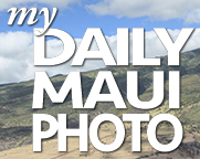 My Daily Maui Photo logo