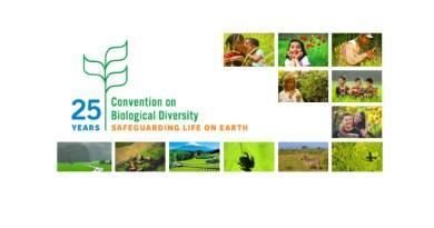 Меѓународен ден на биодиверзитетот