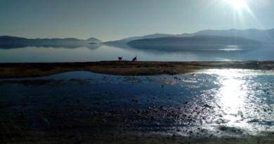 Потписите од петицијата со барања за итни мерки за спас на Преспанско Езеро поднесени до Владата и МЖСПП