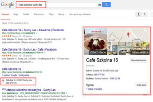 Enhanced Google Search Results