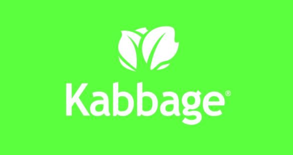 Kabbage Teams Up with Ingo Money to Disburse SMB Loans Within Minutes
