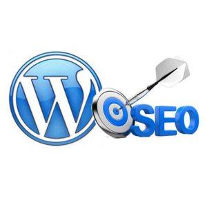 SEO Monthly Service Plan - Web Pro NJ